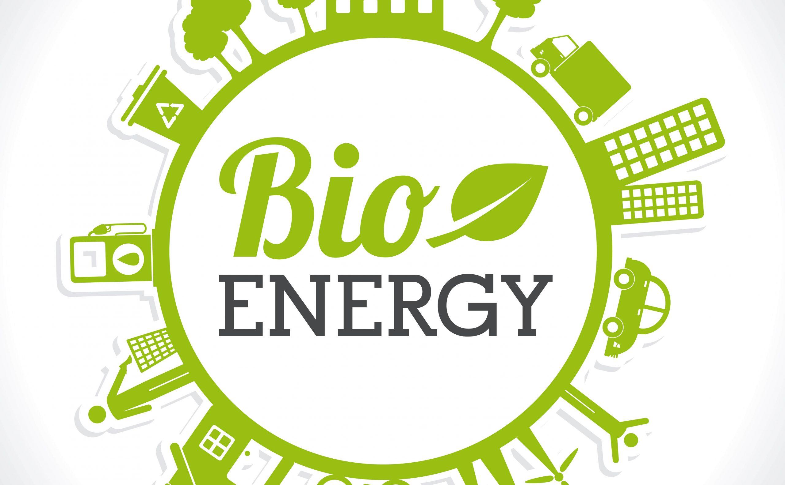 Bio Enerji Eğitimi